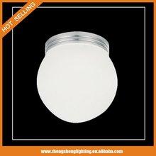2012 Acrylic Led Decorative Light (DLH-1248)