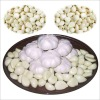 china natural garlic suppliers
