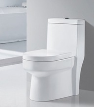 Siphonic One piece Toilet R763 Richford Group Ltd