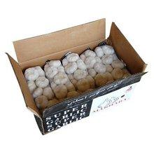 2014 Hot sale New fresh garlic