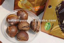 Chestnut for Snack