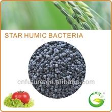 Bio Organic Humus Fertilizer