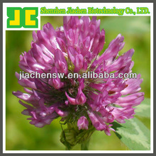 red clover extract for health care products with Isoflavones 8%,20%,40% HPLC
