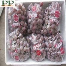 fresh red globe brand name grapes