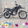 2012 new model 250cc dirtbike SX250GY-12