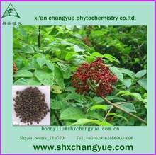 xi'an trading asiatic cornelian cherry fruit p.e.