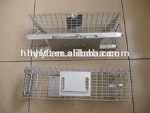 pet squirrel cages