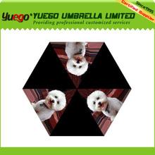 Umbrella With Matching Sleeve Folding NWT Bichon Frise Teddy Dog