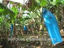 Plastic bags protecting the Banana fruit / banana plastic bag / Poly Banana Grow Bag