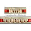 Compuesto de resina sintética dientes/prótesis de resina con el servicio del oem