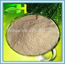 100% Natural Plant Enzyme Bromelain (800GDU/g-3500GDU/g)