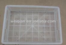 chicken egg basket(200chicks)