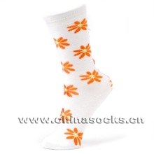 Cotton Fashion Stocking Girl Wearing Socks