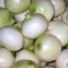 onion peeler / onion peeling machine/garlic & onion peeler machine