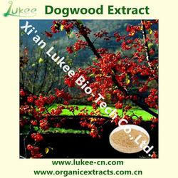 Plant Extract Dogwood Extract Powder / Fructus Corni / Asiatic Cornelian Cherry Fruit