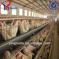 2015 venda quente! Pvc revestido ou galvanizado galinha poedeira gaiolas / design camada de frango gaiola