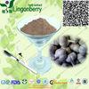 100% Pure Natural Garlic Extract Allicin