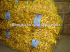 China new crop 200g fresh ginger for sale