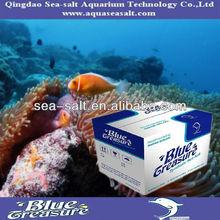 Marine Types Of Tropical Fish For Aquarium