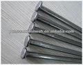 المجلفن مسمار مسامير الحديد المشتركة( مصنع)