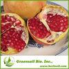 2014 Natural plant Pomegranate peel Extract Ellagic acid 40%90% HPLC