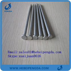Galvanized Grooved/Smooth Shank Concrete Steel Nail Products
