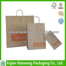 Eco Friendly Shopping Paper Bag