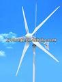 3KW turbina del molino de viento de la turbina eólica pequeña para el hogar / granja / iluminación del parque