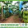 agriculture non woven cloth, tnt textile for banana cover