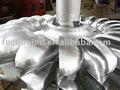 La turbina de agua/turbine's pelton corredor/planta de energía