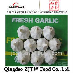 natural garlic garlic price