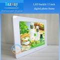 Tema popular 12 pulgadas de fotos digital led/marco de vídeo