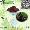 Natural black cherry extract powder
