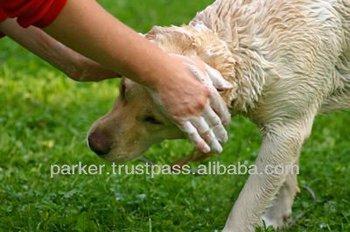 Neem Pet Shampoo
