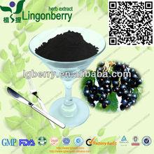 Factory supply wild black currant powder