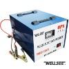 WELLSEE WS-ACM1000 1000W solar power converter inverter