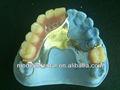 Dental de acrílico de la dentadura/prótesis parcial proveedor prótesis dental