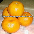 fresh fruits,sweet Ponkans