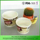 double PE disposable paper soup bowl