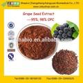 Profissional GMP de fornecimento solúvel em água preto extrato de semente de uva