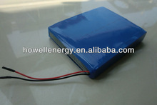 12v lipo battery for ups/12v ge power lipo battery