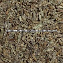 Gujarat Cumin Seed