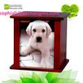 horno crematorio de animales de cremación de mascotas de la caja