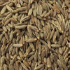 European Quality Cumin Seed Exporter