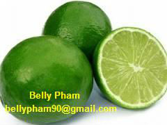 Fresh Lime, Fresh Lemon: High Quality and Competitive Price