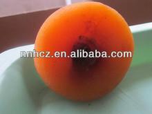 frutta secca dolce organic caco essiccato