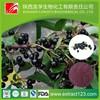 Acai Berry/ Brazilian Acai P.E.& acai fruit extract