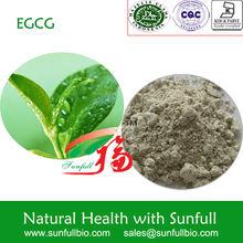 green tea extract/tea polyphenol/catechin/green tea powder