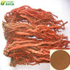 factory sell nice quality radix salvia miltiorrhiza extract/radix salvia miltiorrhiza extract powder good price