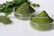 GMP Certified 1200mg Moringa Capsules Herb Medicine